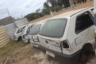 LOTE 323
